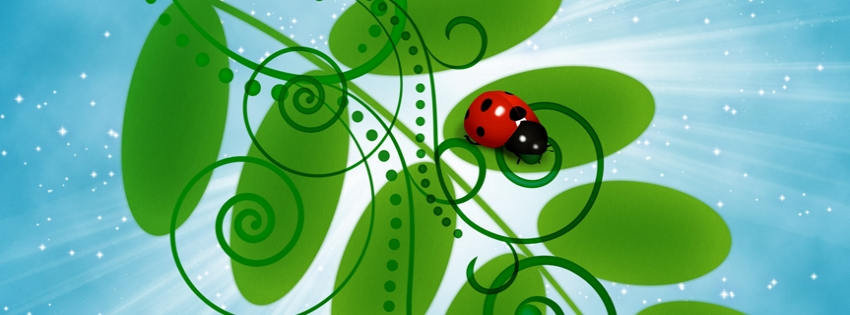 Lady-bug-timeline-cover - Facebook timeline covers maker
